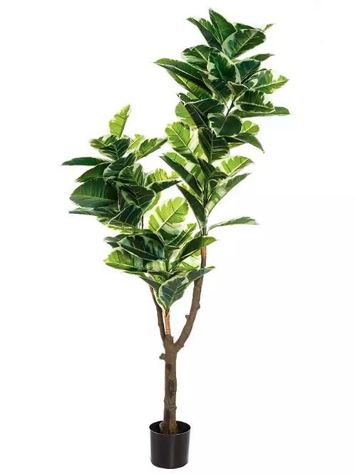 Planta Roble PVC 175 cm