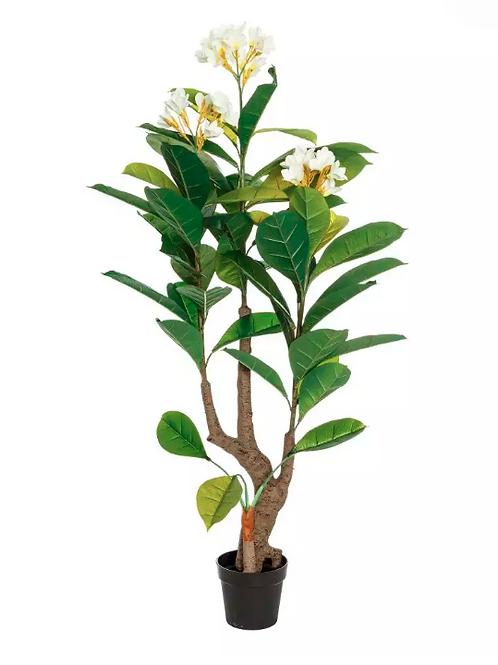 Planta Plumera PVC 165 cm