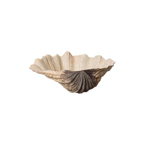 Concha cerámica Vieira