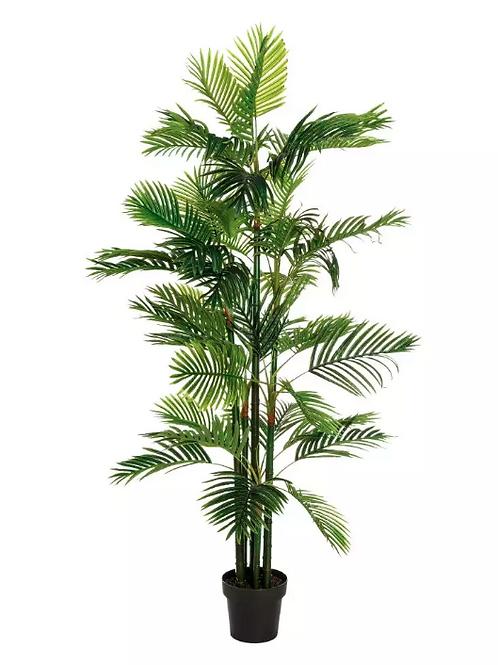 Planta Areca Palmera PVC 170 cm