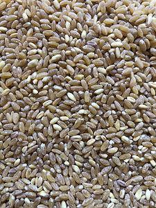 Пшеничная.jpg