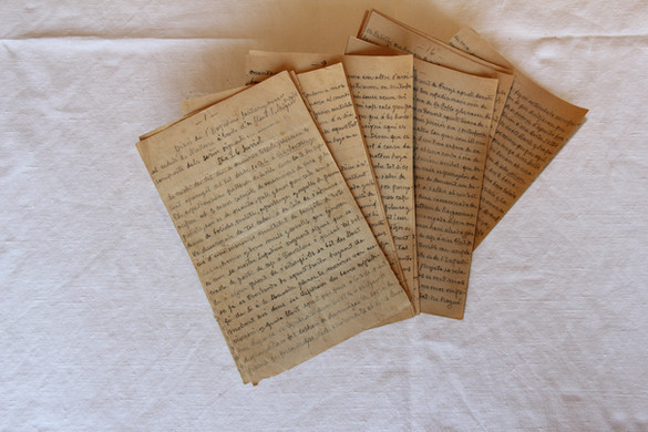 Journal or chronicle of the expedition. Some of the most significant paratextual elements of the document can be seen in the picture.