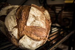 Boulangerie-_Patisserie-7-Copy-X-1024x68