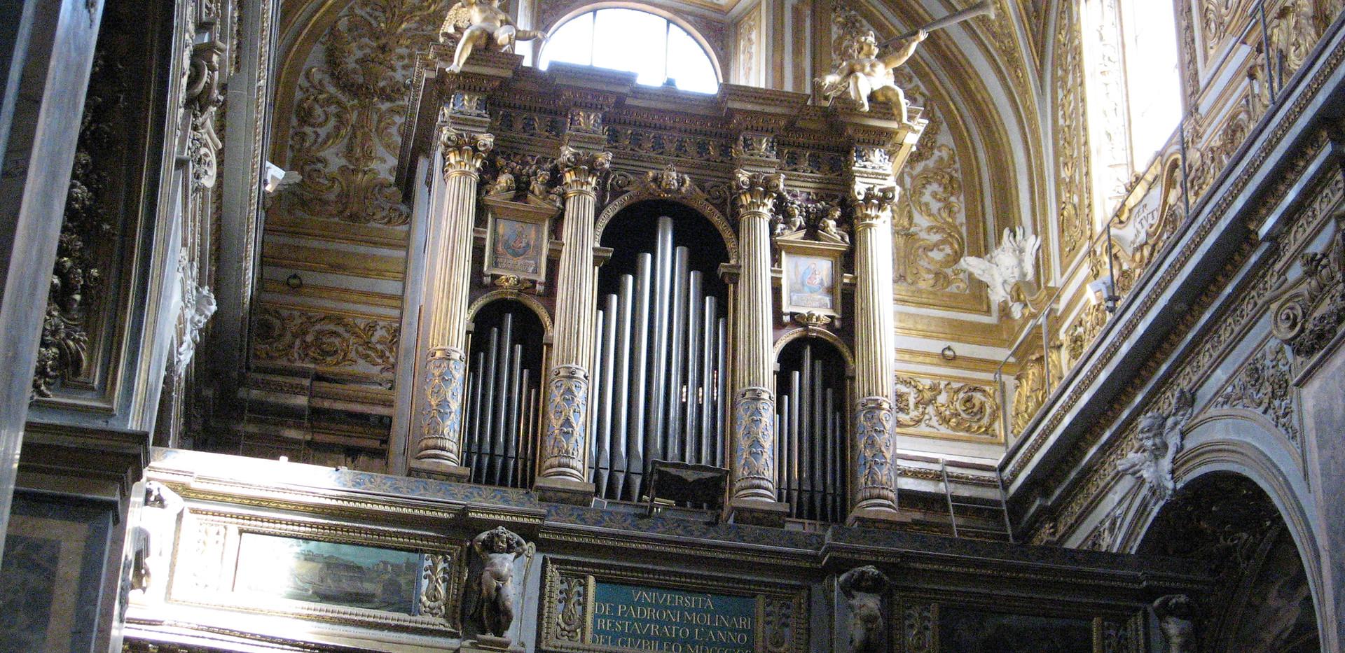 organo (1).JPG