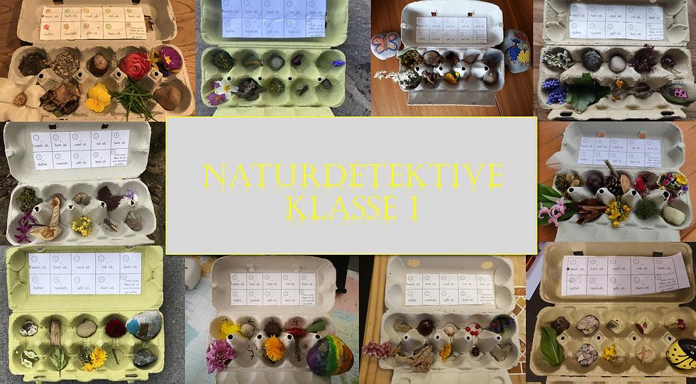 Naturdetektive_Kl1.png