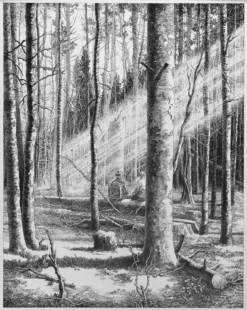 Berchtersgaden Woods