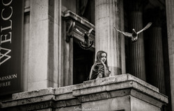 Girl with pigeon