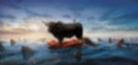 Money_Bull_OCEAN_LAYERE_FINAL_OK_Version