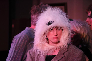 Paul the polar bear .jpg