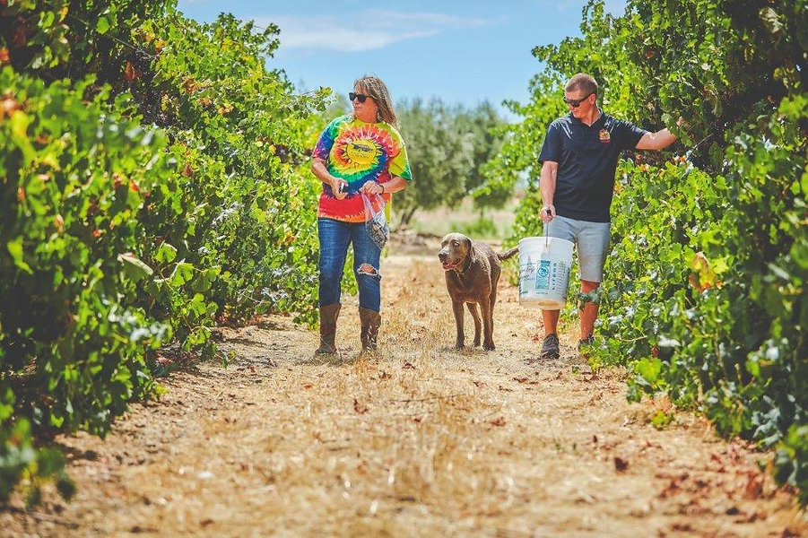 Rhonda and Alec with Sauvy in vineyard.j