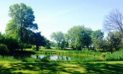 Picturesque Ponds