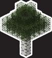 MYC Minecraft - Birch Tree 18in.png