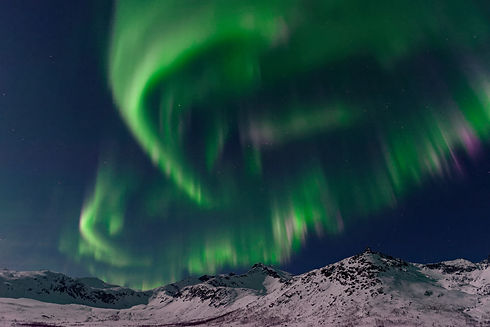 80_Kvaløya_Tromsø_Norvège&Laponie_201802