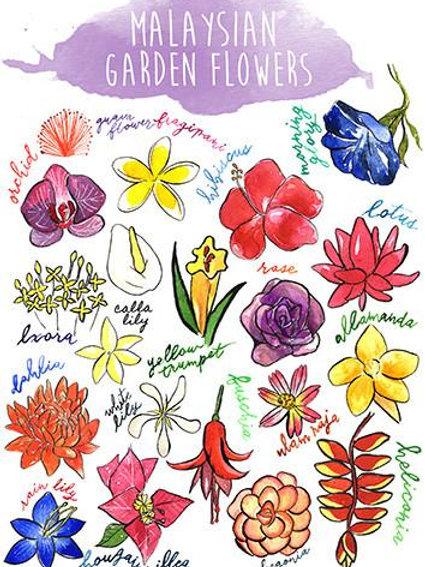Stickerrific  | Postcard | Malaysian Garden Flowers