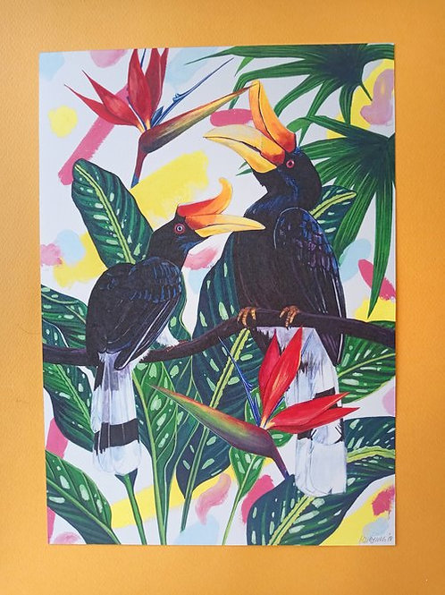 Hsieying   A4 Print   Hornbill