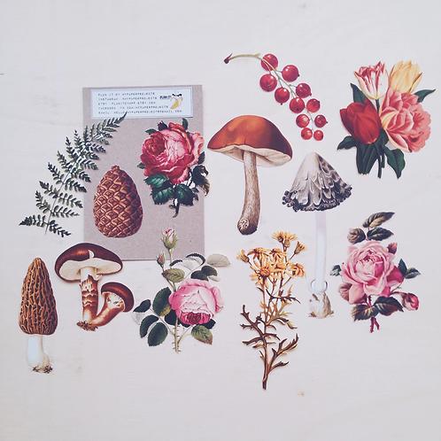 My Paper Projects | Paper Goodies | Vintage Style Botanical Ephemera