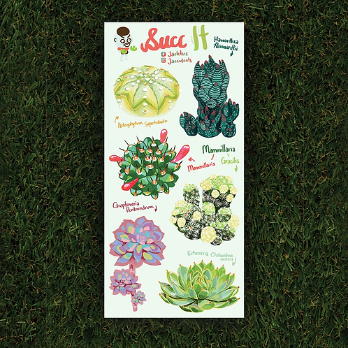 Jacktus | Succulent Sticker Set