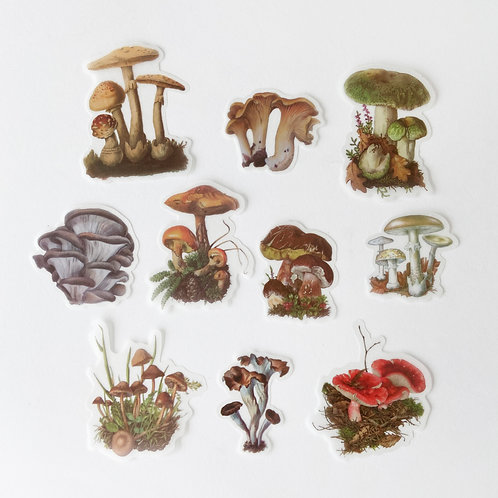 Stickers | Mushrooms