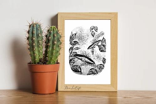 Nia Latif | Art Print | Trogonoptera Brookiana
