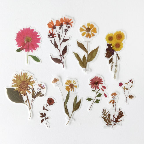 Stickers | Pressed Wildflowers