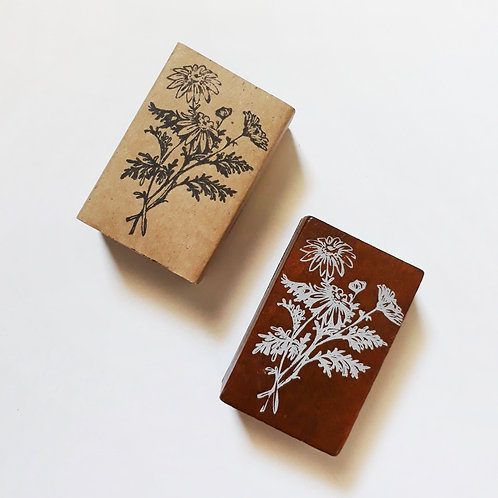 Paper Plans   Stamp   Camomile