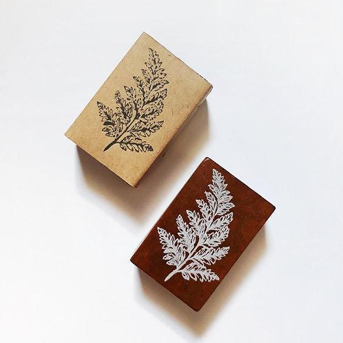 Paper Plans | Stamp | Pteris Ensiformis Burm