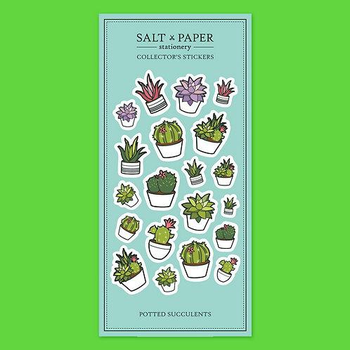 Salt x Paper | Collectors' Stickers | Potted Succulents