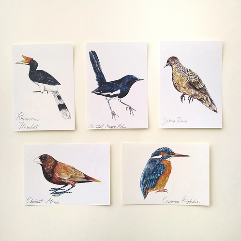 Hsieying | Postcard Set | Birds of Asia