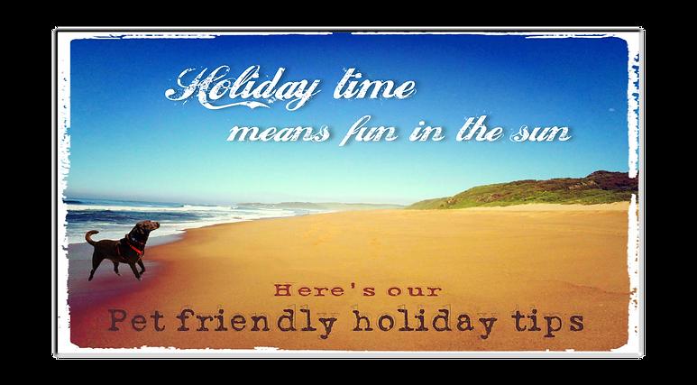 Summer holiday by Irene Ferreira