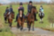 JumpCross Training at Codham Park Equestrian