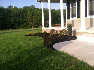 Need a landscape makeover?