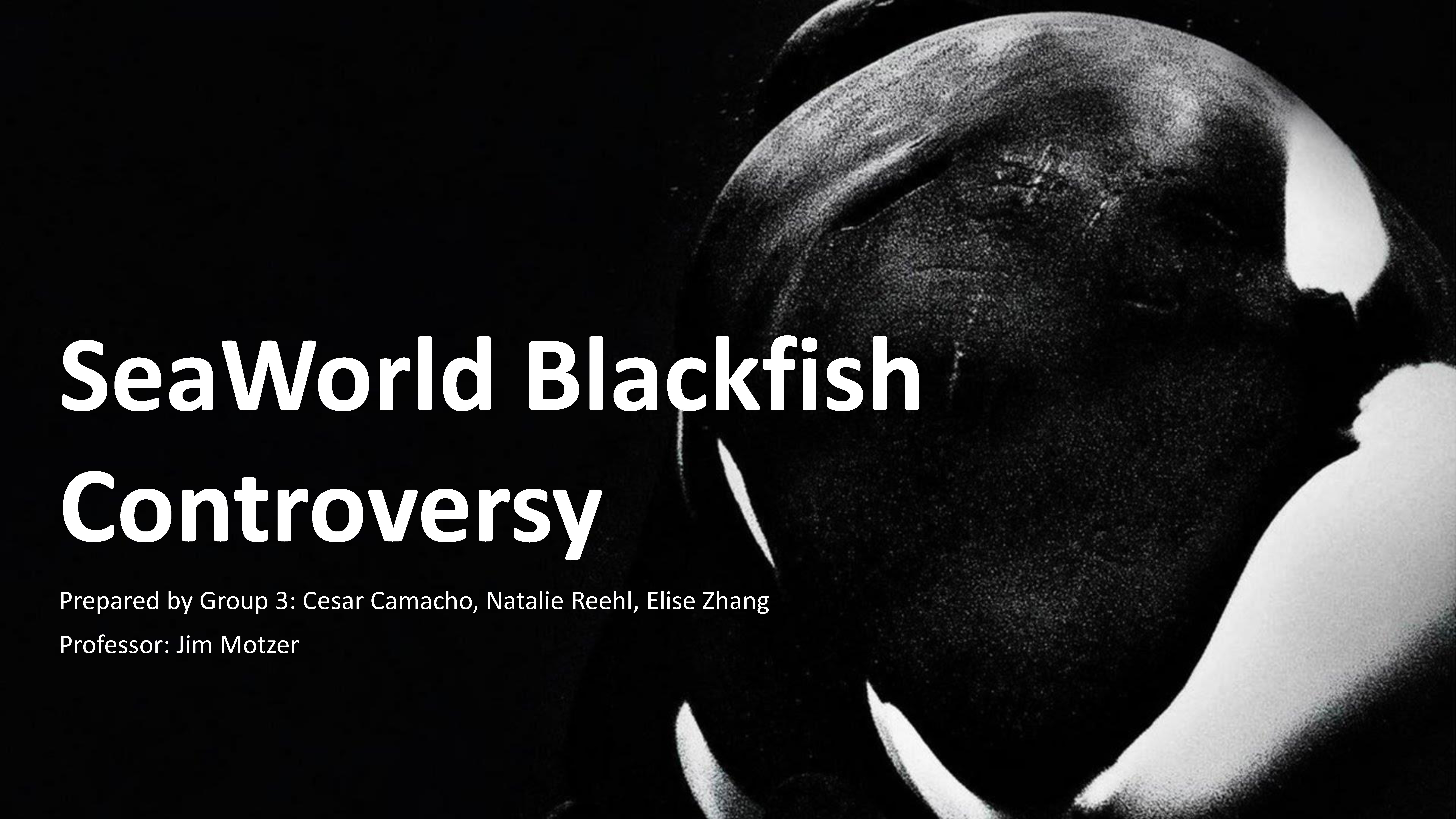 Group 3 - Seaworld Blackfish Controversy
