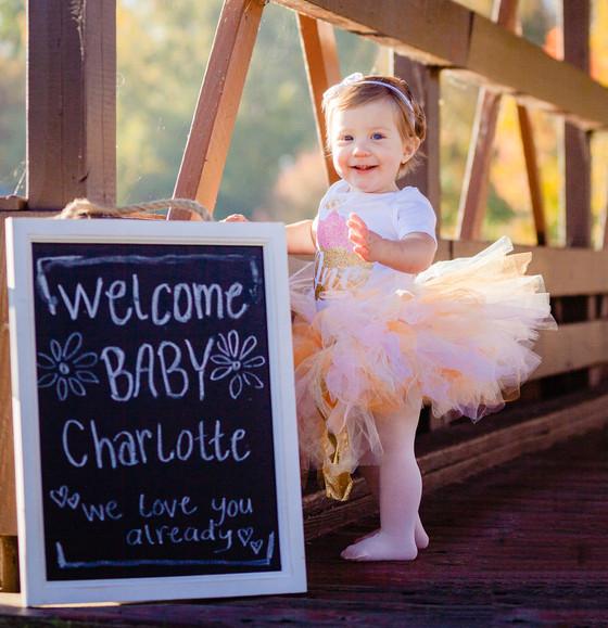 Charlotte's 1st Birthday! | Heritage Park, Taylor MI