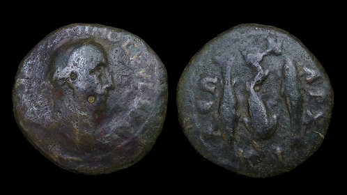 MAXIMINUS THRAX . THRACE, Anchialus . AE25 . Dolphin with fish friends