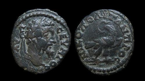 SEPTIMIUS SEVERUS . MOESIA INFERIOR, Nicopolis ad Istrum . AE18 . *Pedigreed*