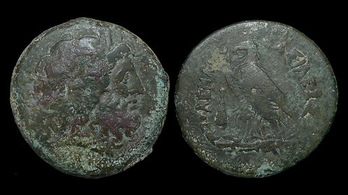 PTOLEMAIC KINGDOM . Ptolemy IV, 222-204 BC . AE Drachm . Almost 70g and MASSIVE!