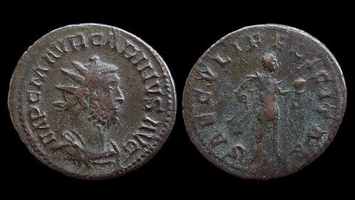 """CARINUS . AD 283-285 . Antoninianus . """"SAECVLI FELICITAS"""" . Ludgunum"""