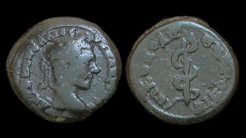 MACRINUS . MOESIA INFERIOR, Nicopolis ad Istrum . AE17 . Staff of Asklepios