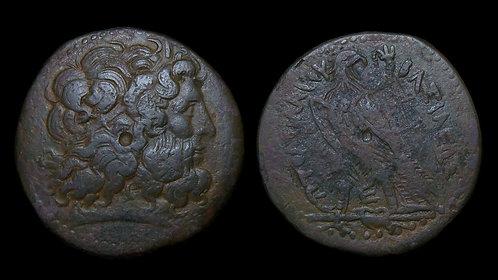 PTOLEMAIC KINGDOM . Ptolemy III, 246-222 BC . AE Tetrobol . HUGE, Almost 40mm!