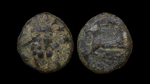 PISIDIA, Selge . 2nd-1st Centuries BC . AE12 . Head of Herakles / Stag