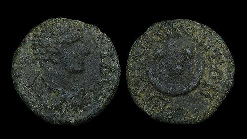 GETA . MOESIA INFERIOR, Marcianopolis . AE17 . Crescent and Stars
