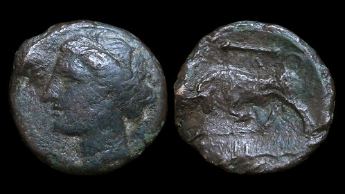 SICILY, Syracuse . Hieron II, 275-215 BC . AE19 . Charging bull