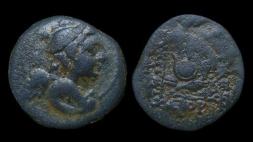 SELEUKID KINGDOM . Antiochos VII Sidetes, 138-129 BC . AE19 . Eros / Isis Crown
