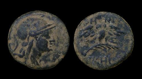MYSIA, Pergamon . circa 200-133 BC . AE16 . Owl on palm branch