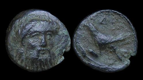 MYSIA, Adramytteion . After 350 BC . AE13 . Facing head of Zeus / Eagle **Rare**