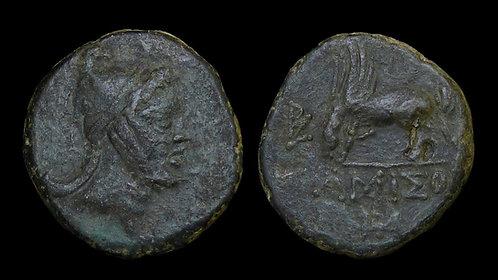 PONTOS, Amisos . Mithradates VI, 120-63 BC . AE24 . Perseus / Pegasos