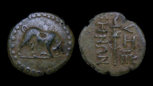 MYSIA, Kyzikos . 2nd century BC . AE22 . Butting bull / Torch