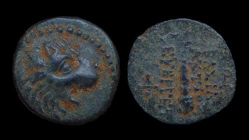 SELEUKID KINGDOM . Antiochos VII Sidetes, 138-129 BC . AE15 . Lion's Head