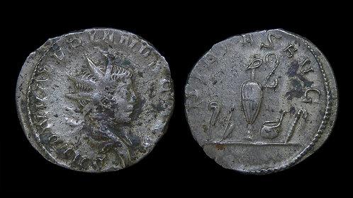 SALONINUS, as Caesar . AD 258-260 . Billon Antoninianus . Priestly Implements