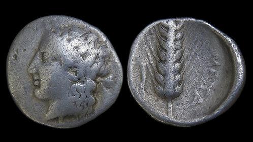 LUCANIA, Metapontion . 400-340 BC . AR Didrachm . Ex Vineyard Collection